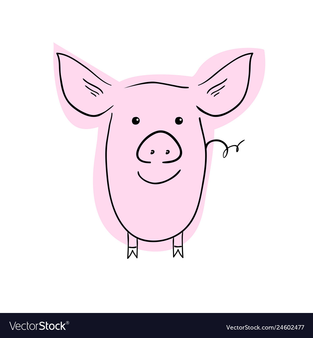 Cute pig hand drawing vector image