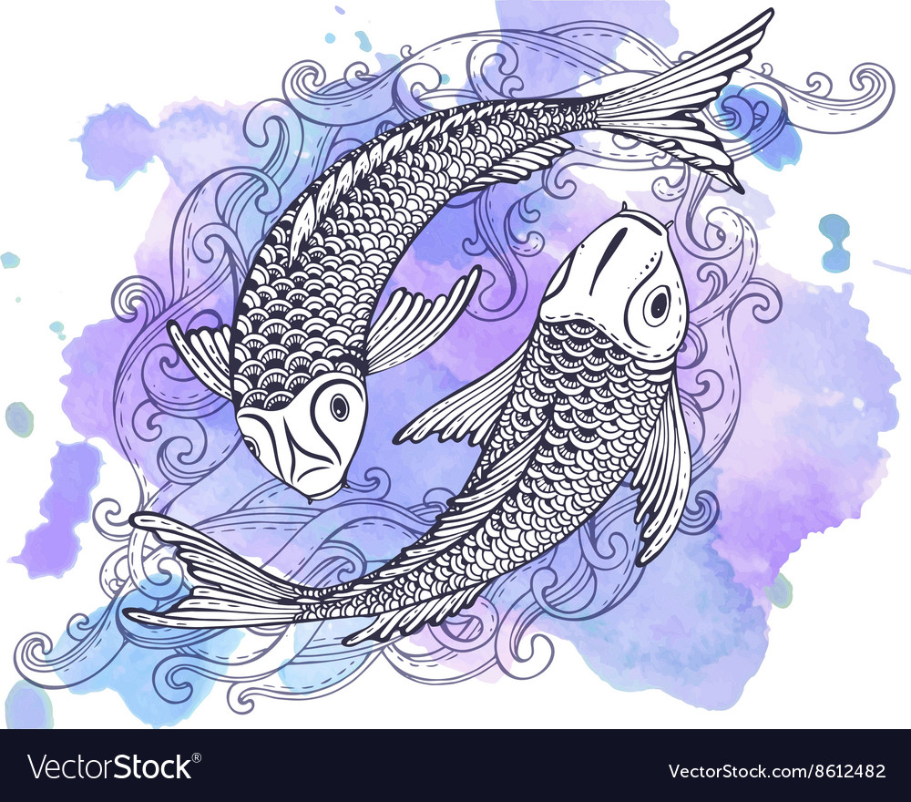 Hand drawn of two Koi fishes Japanese carp