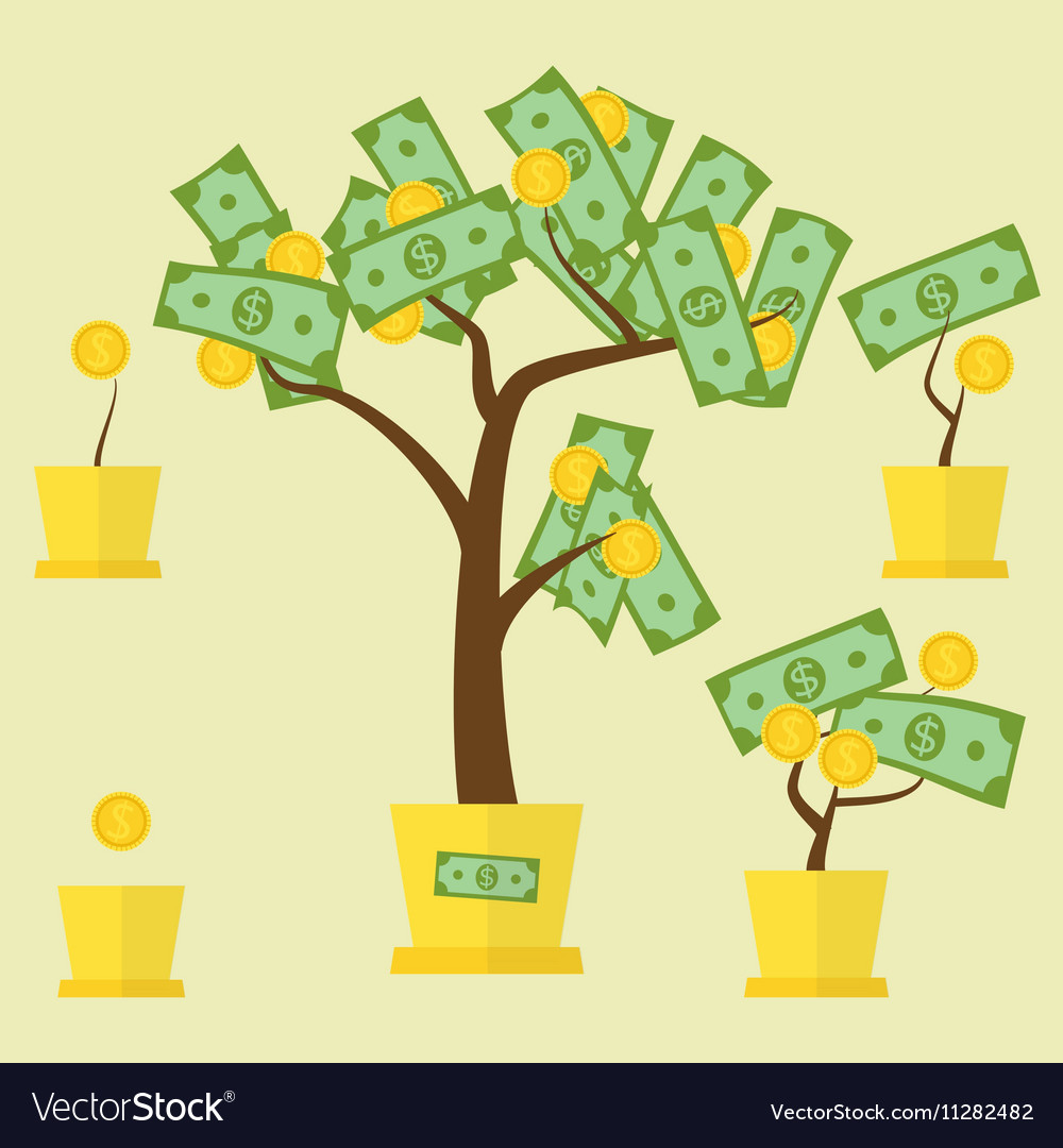 Money tree growth vector image