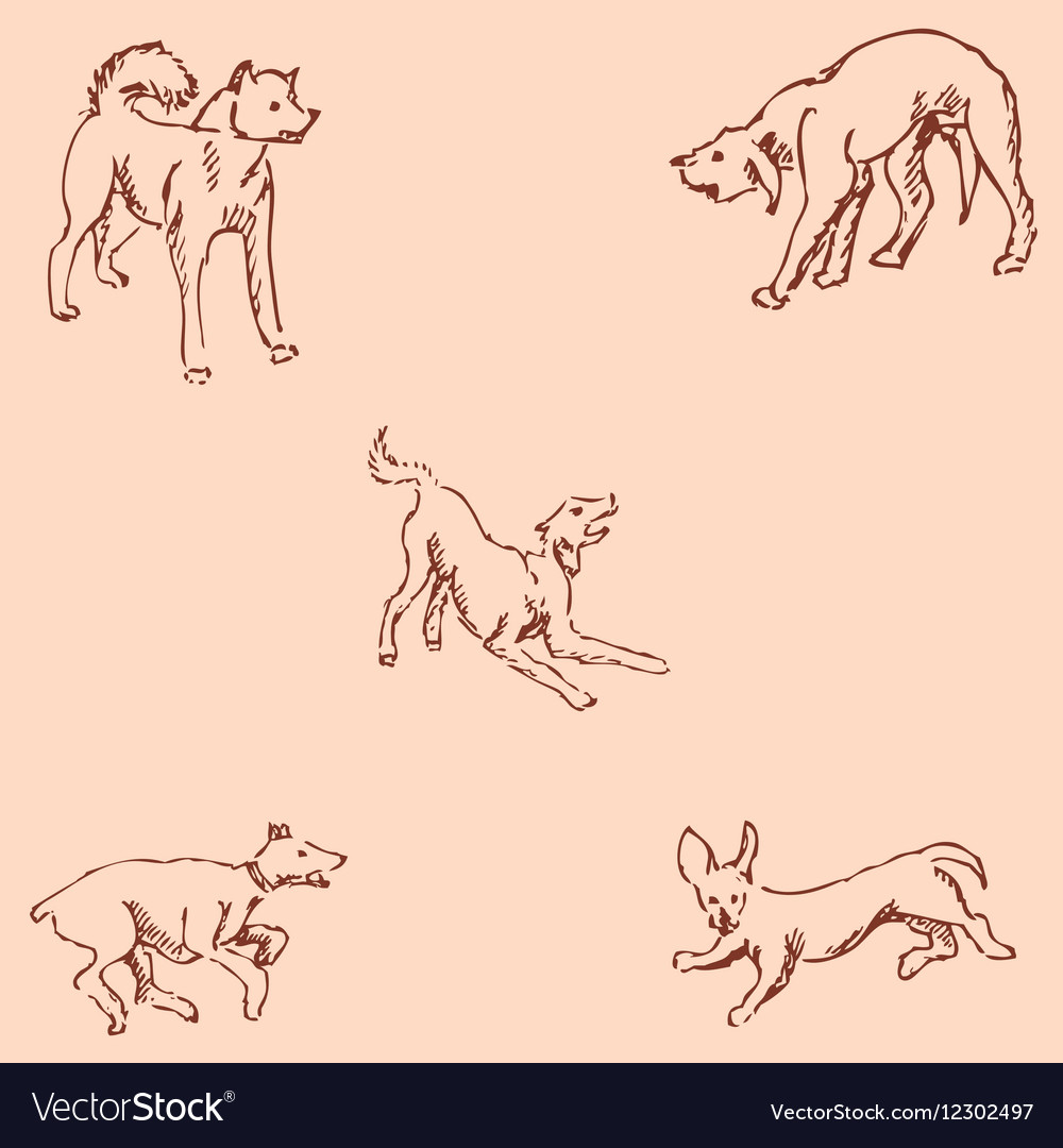 Dogs Sketch pencil Drawing by hand Vintage