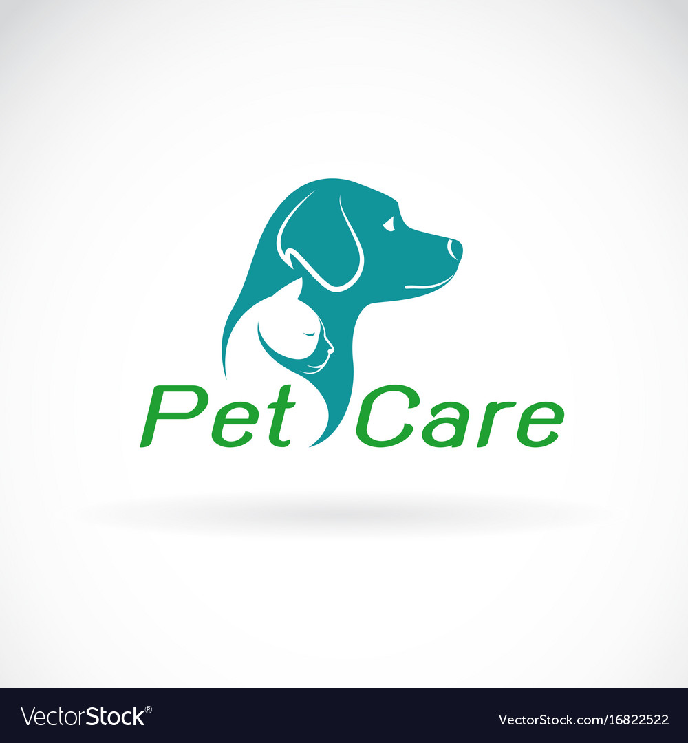 Pet care shop design on white background dog and