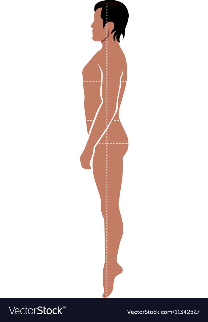 Fashion man full length template figure vector image on vectorstock fashion man full length template figure vector image maxwellsz