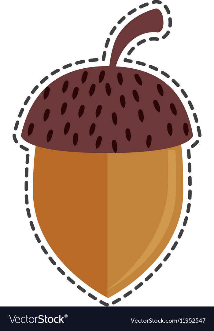 Nut seed isolated icon