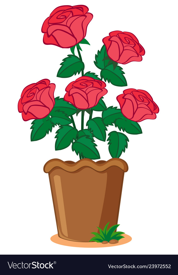Pink Roses In Pot Royalty Free Vector