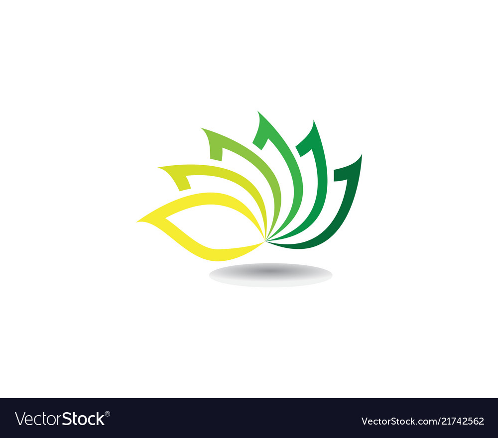 Beauty Lotus Flowers Design Logo Template Icons Vector Image