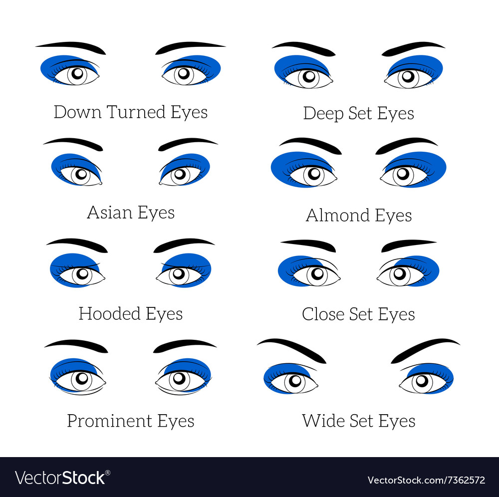 Easy makeup tips for eyes Royalty Free Vector Image