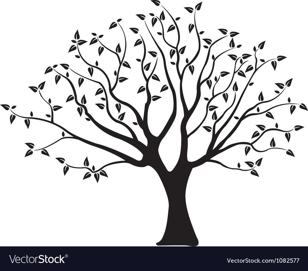 tree royalty free vector image vectorstock rh vectorstock com tree vector free icon bamboo tree vector free download