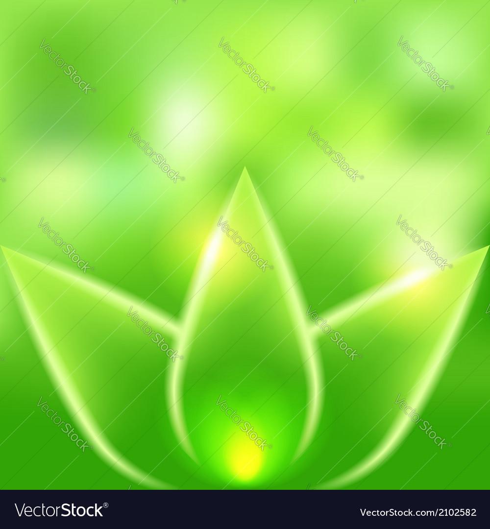 Green leaves blurred background