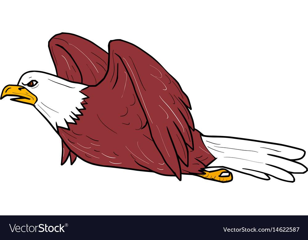 Bald eagle flying cartoon