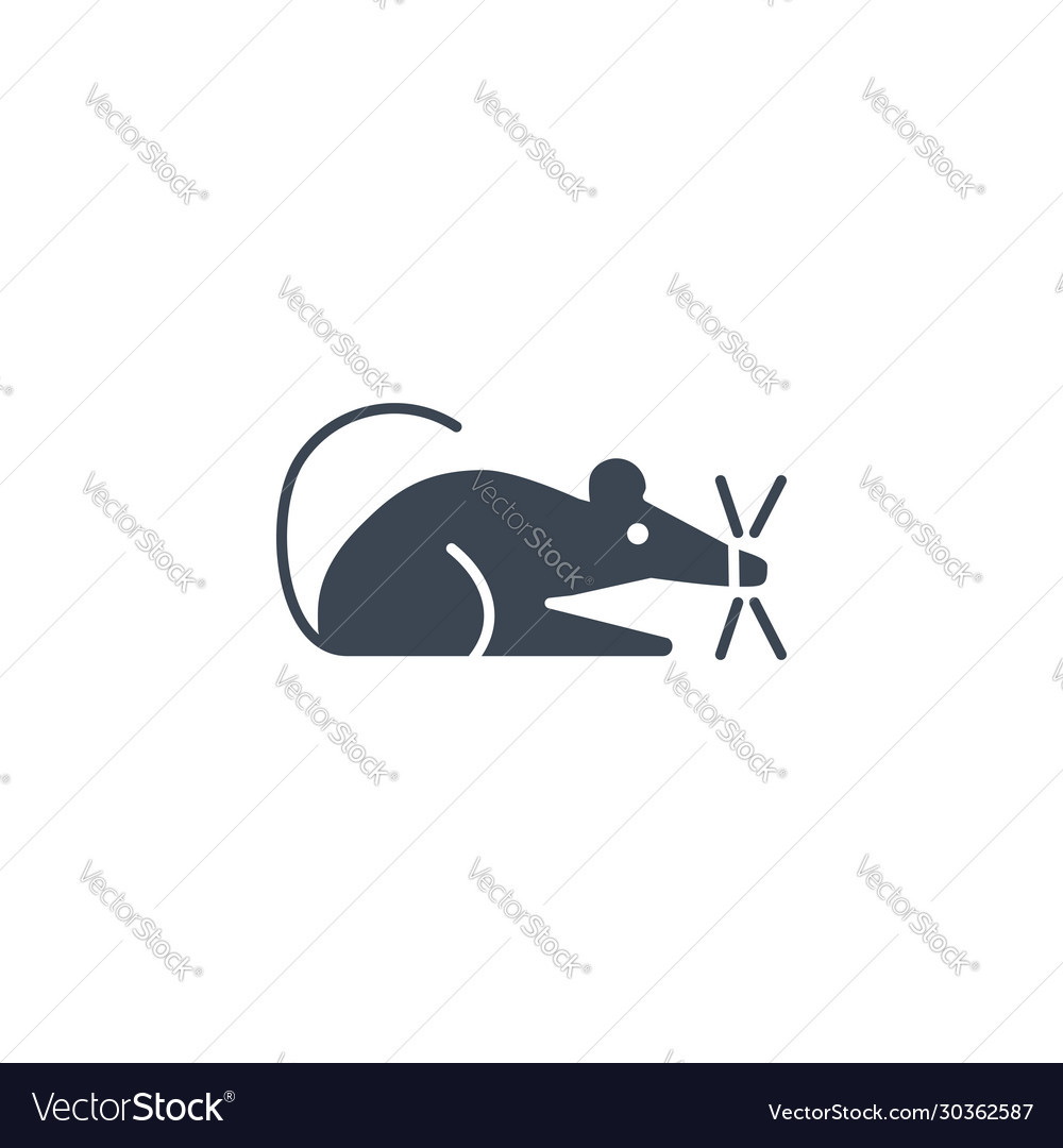 Laboratory mouse related glyph icon