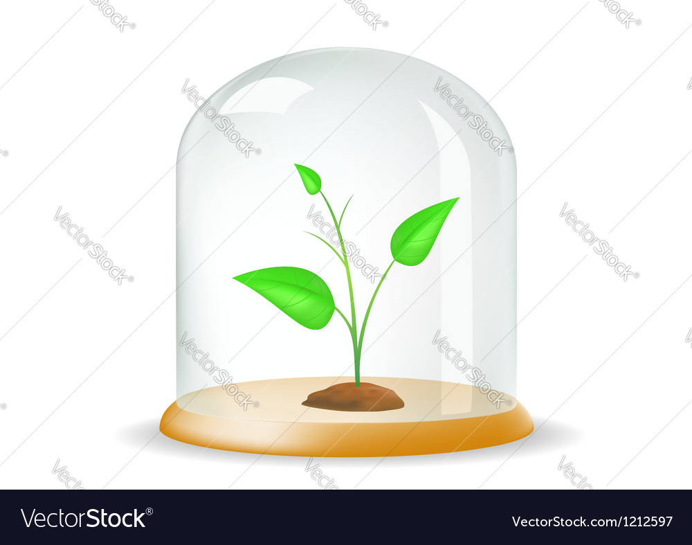 Plant under the hood vector image