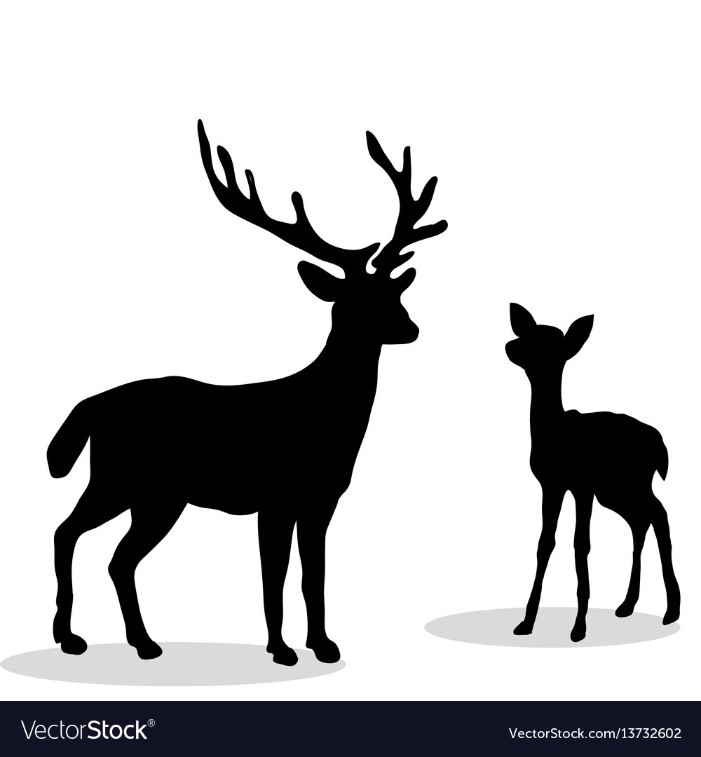 Black silhouette deer and fawn white backgroun vector image