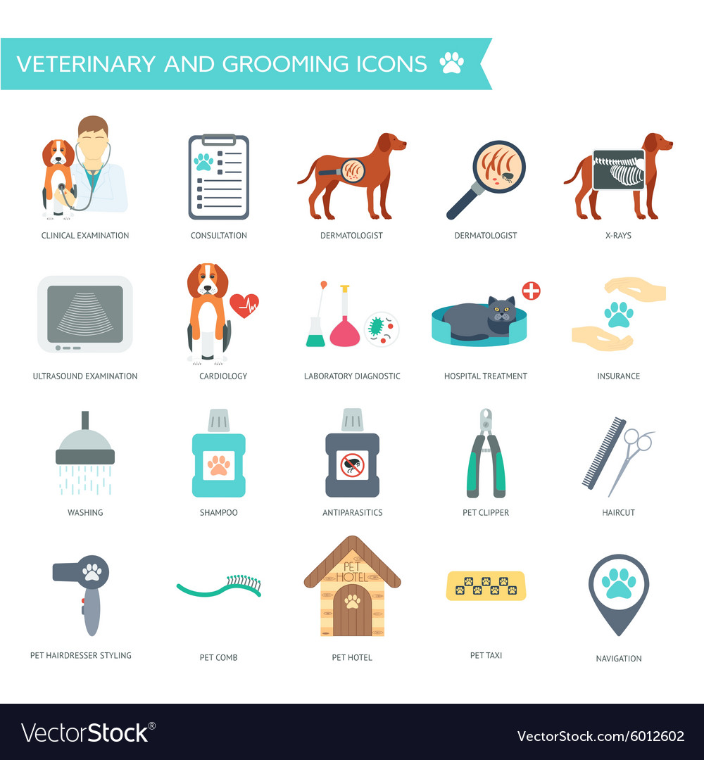Set of veterinary and grooming icons with names
