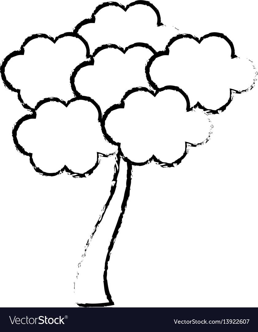 Sketch tree sakura japanese flora