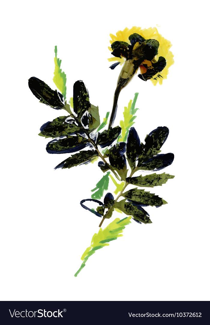 Hand drawn abstract autumn herbs