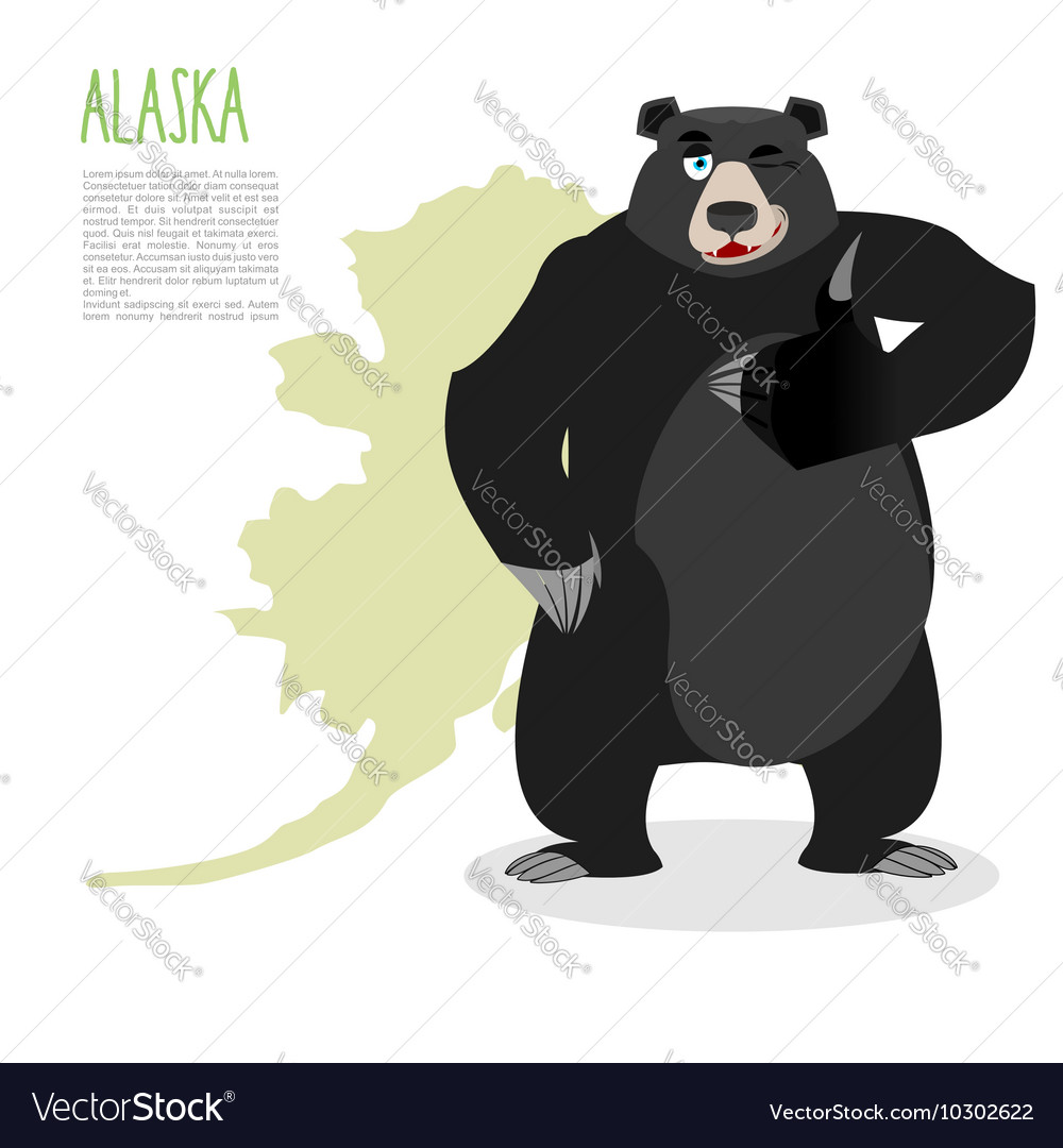 American black bear baribal and Alaska Grizzlies
