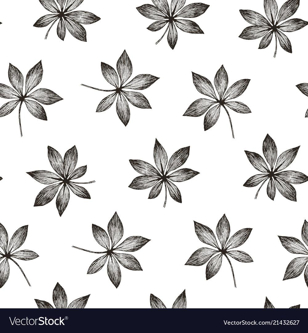 Tropic plants floral seamless jungle aralia