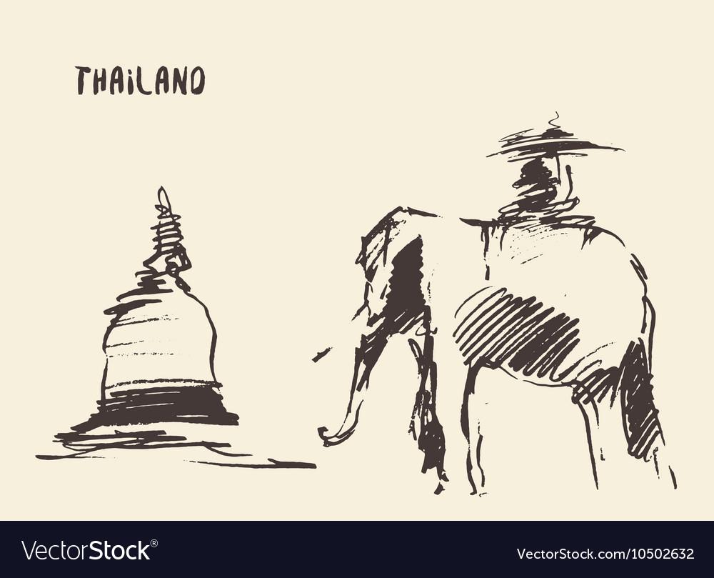 Elephant temple thailand vector image