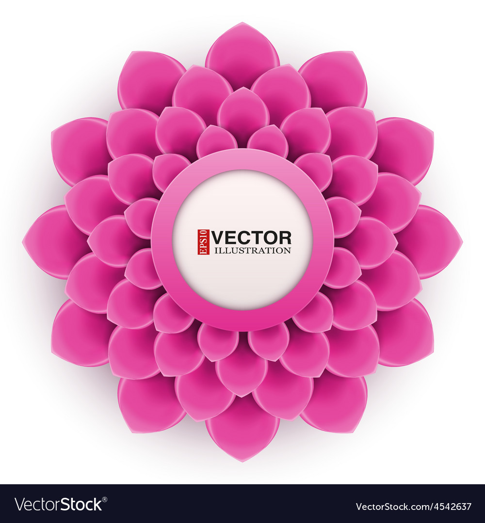 Greeting Card Or Background With Soft Pink Flower Vector Image
