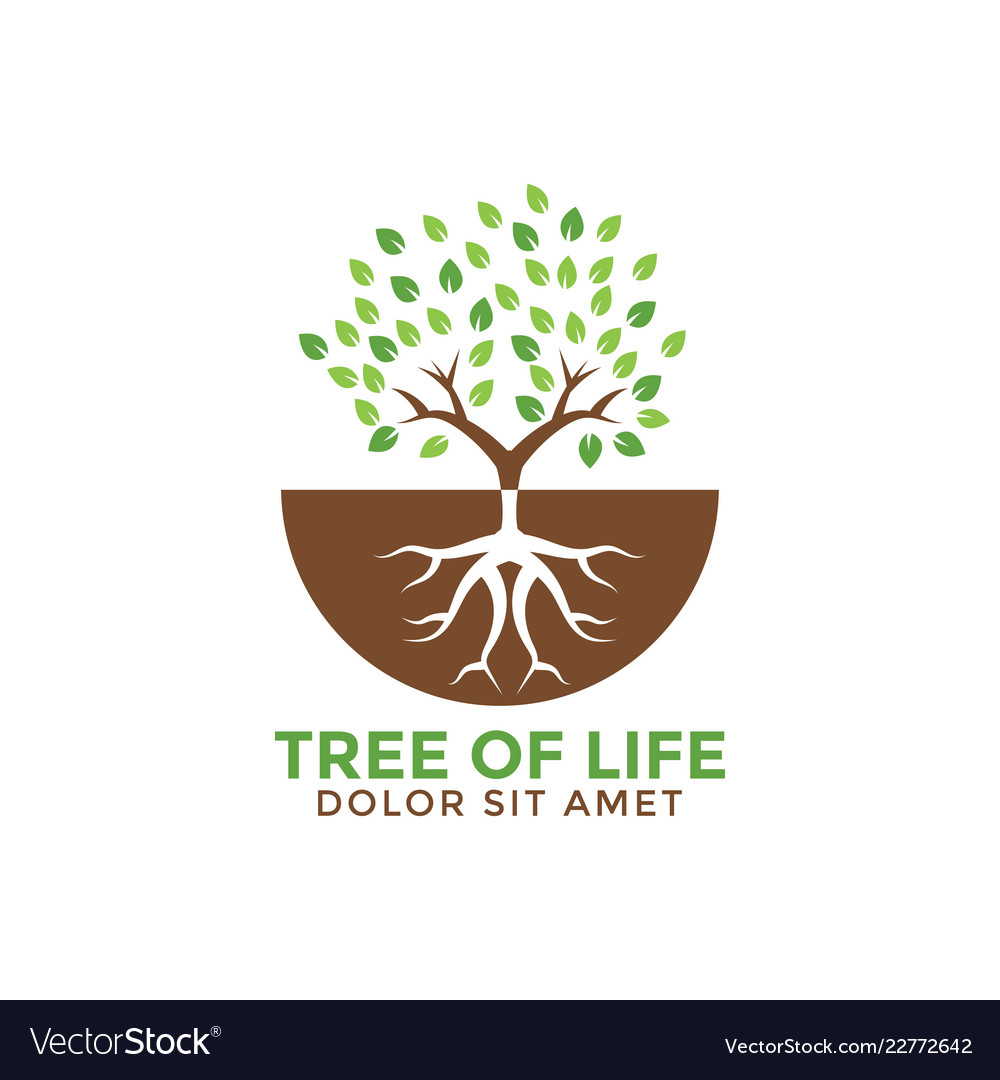 tree of life graphic design template royalty free vector
