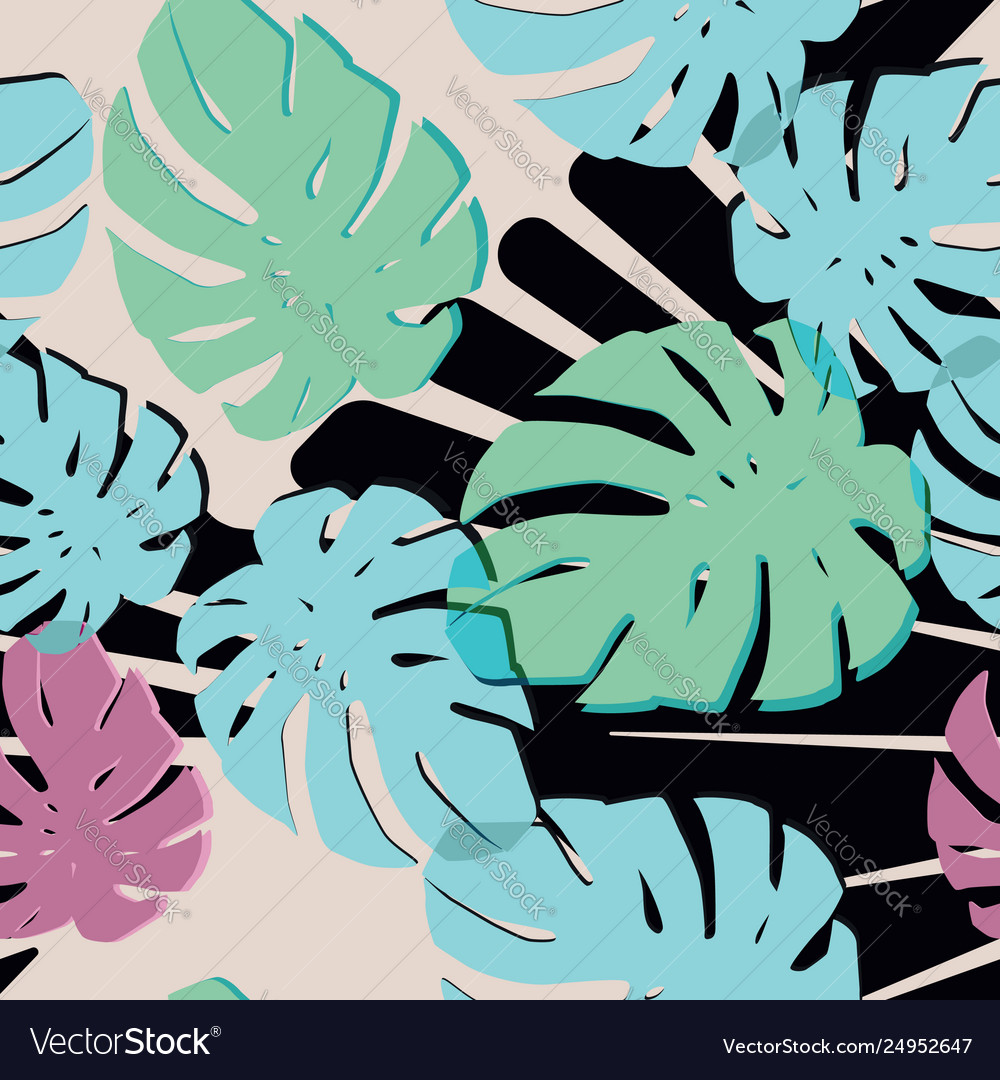 Abstract color monstera leaves black white