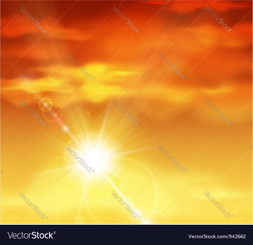 Beautiful sunset vector image