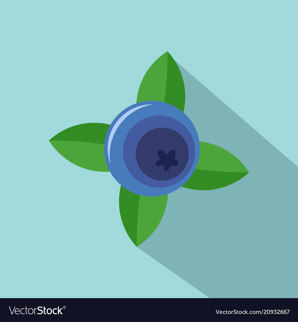 Blueberry with shadow icon flat style vector image