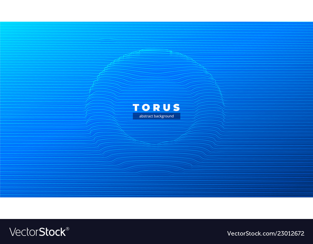 Abstract torus or a tunnel the black hole the