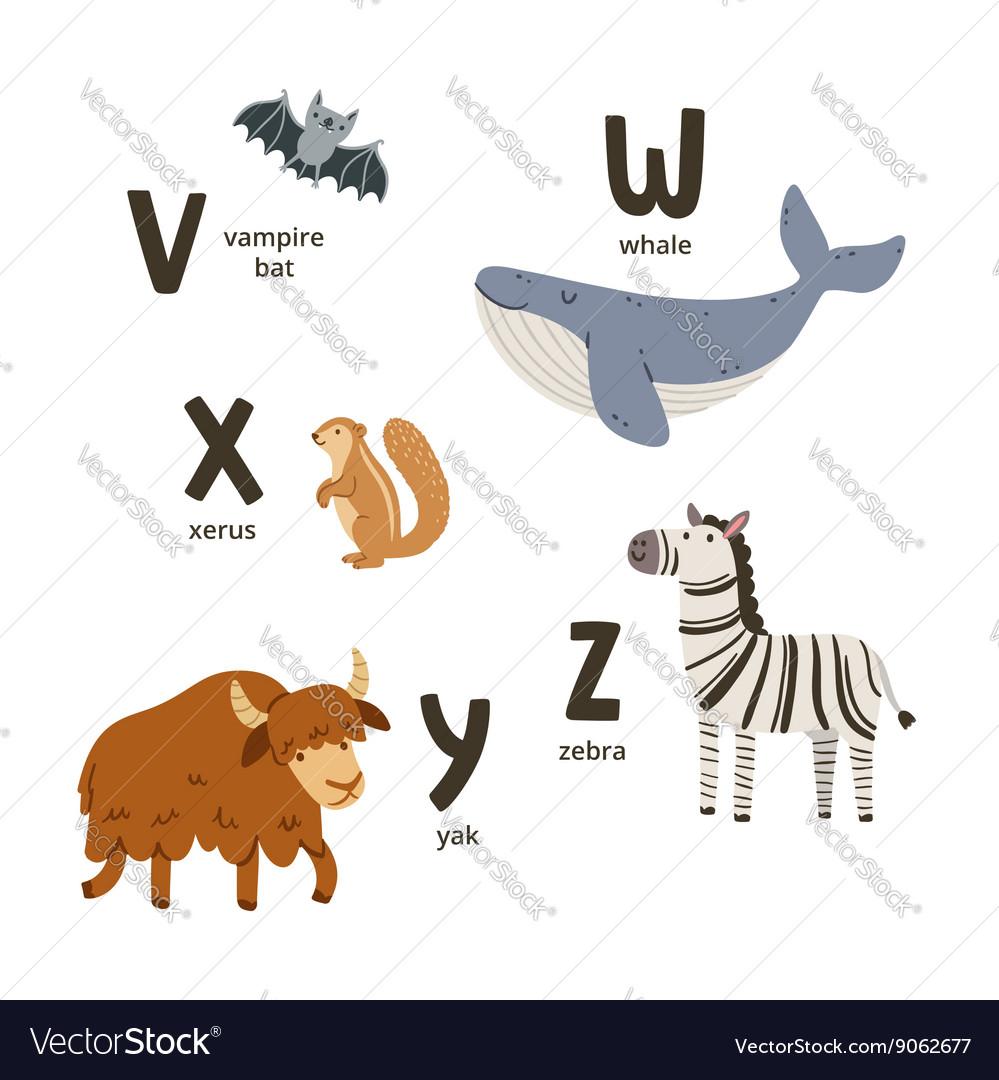 Animal alphabet letters v to z