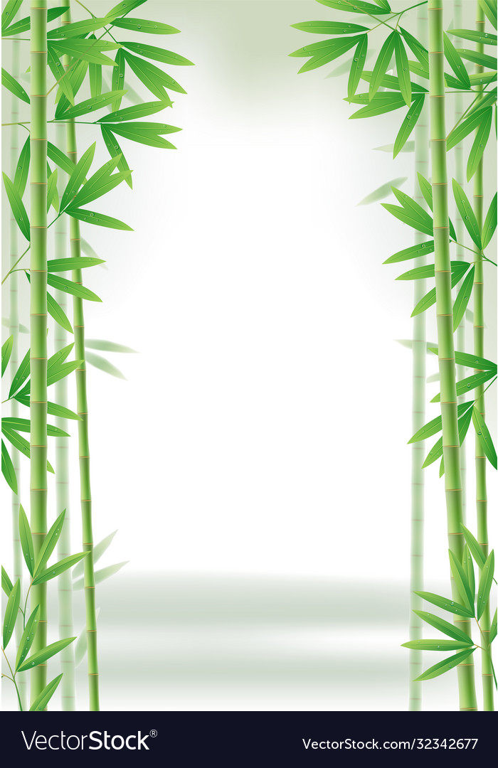 Green bamboo frame with stems and leaves