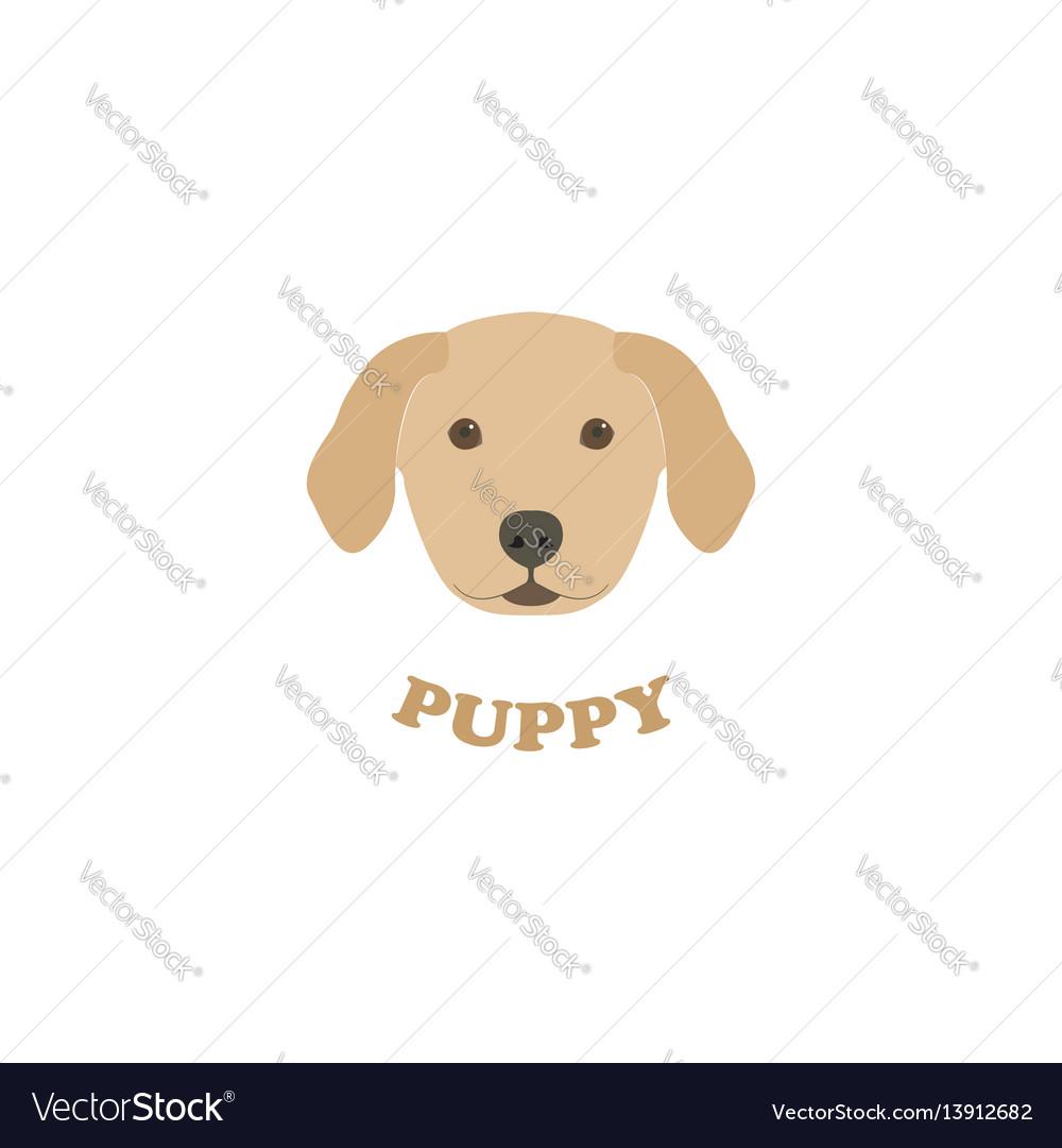 Portrait of labrador retriever puppy vector image