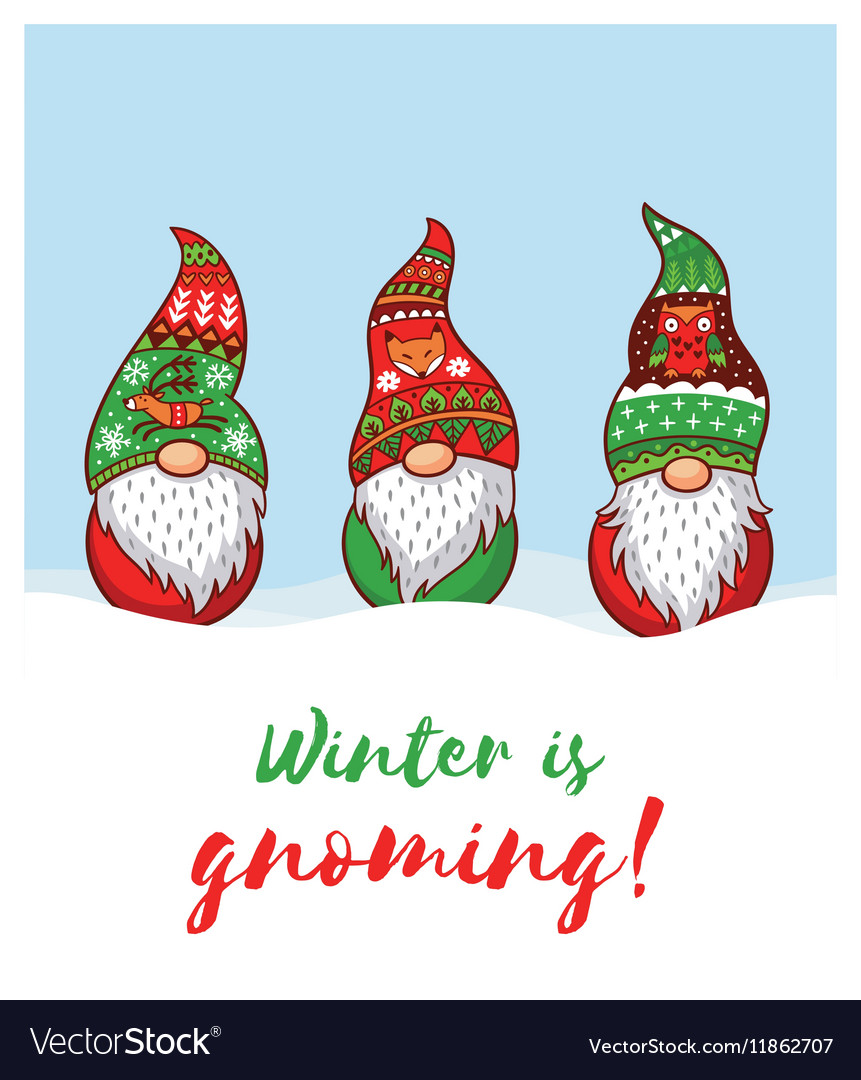 Christmas Gnomes.Winter Is Gnoming Card With Christmas Gnomes In