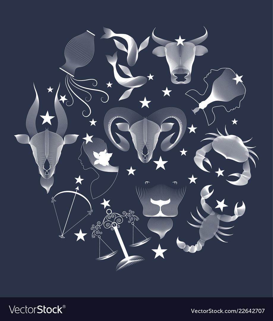 Zodiac signs circle over dark sky