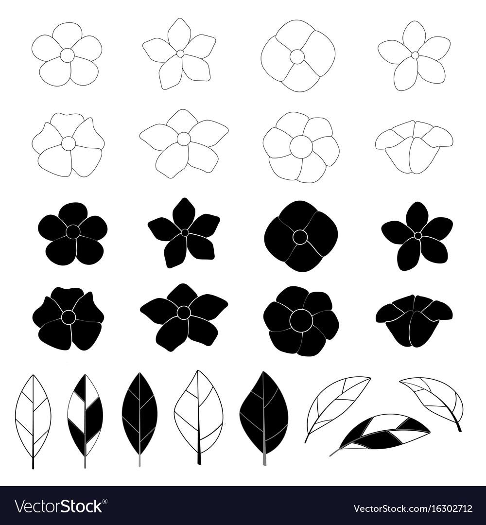 Flower icon set on white background