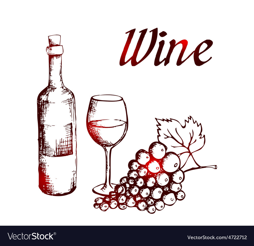 Sketch of wine bottle glass and grapes