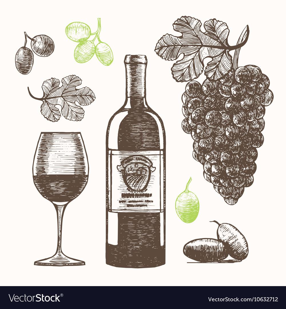 Wine Set Hand Draw Sketch