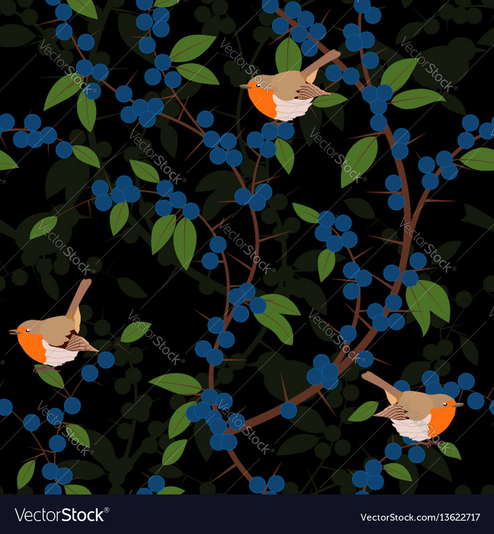Seamless pattern of blackthorn berries and robin