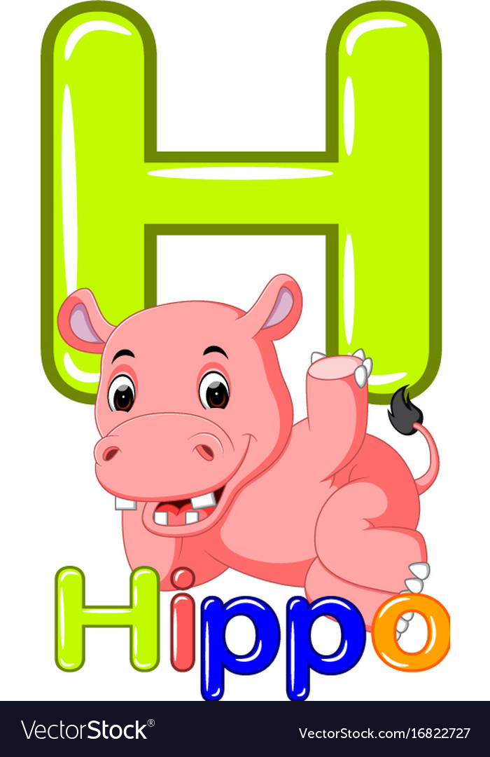 Animals alphabet h is for hippo