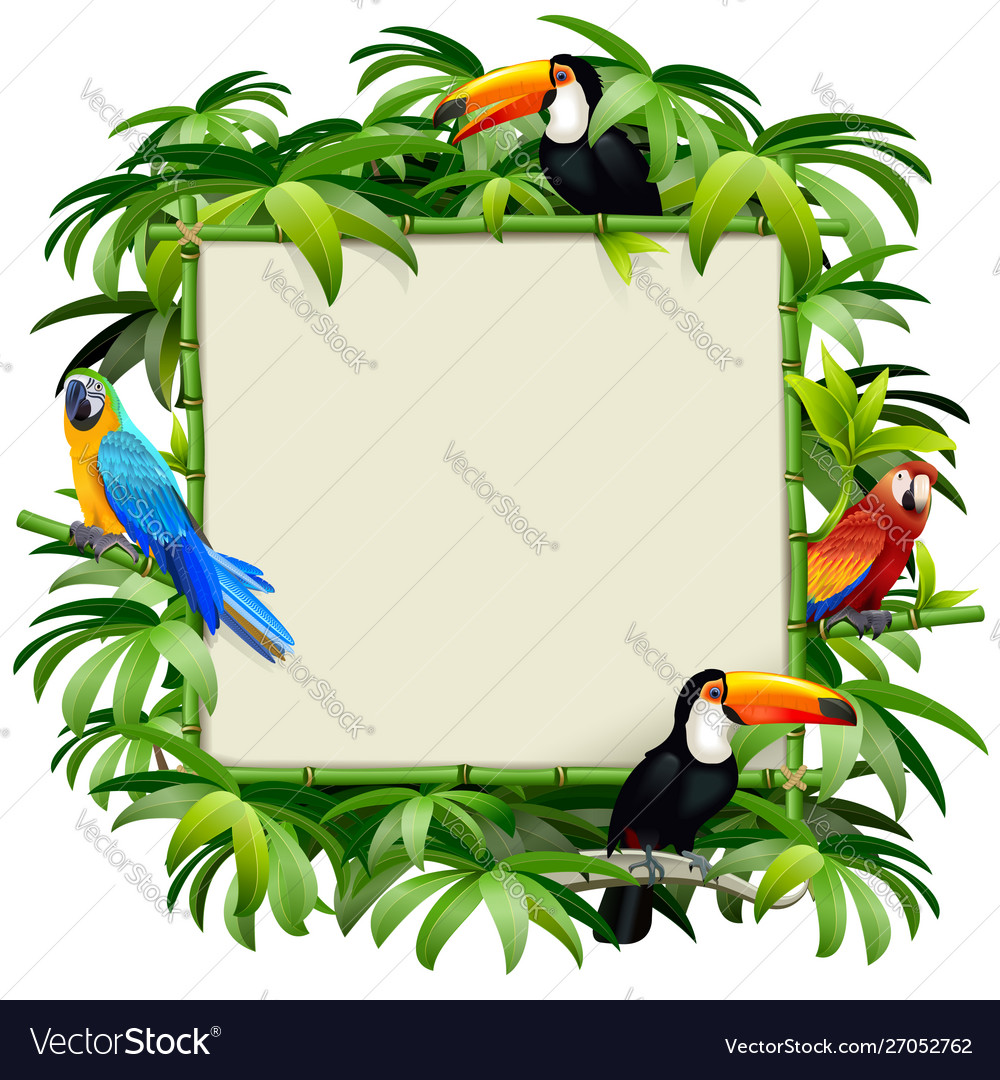 Bamboo frame with tropical birds