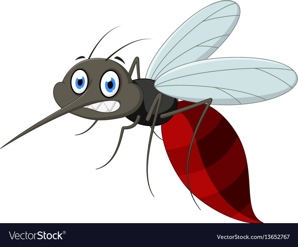 Angry mosquito cartoo