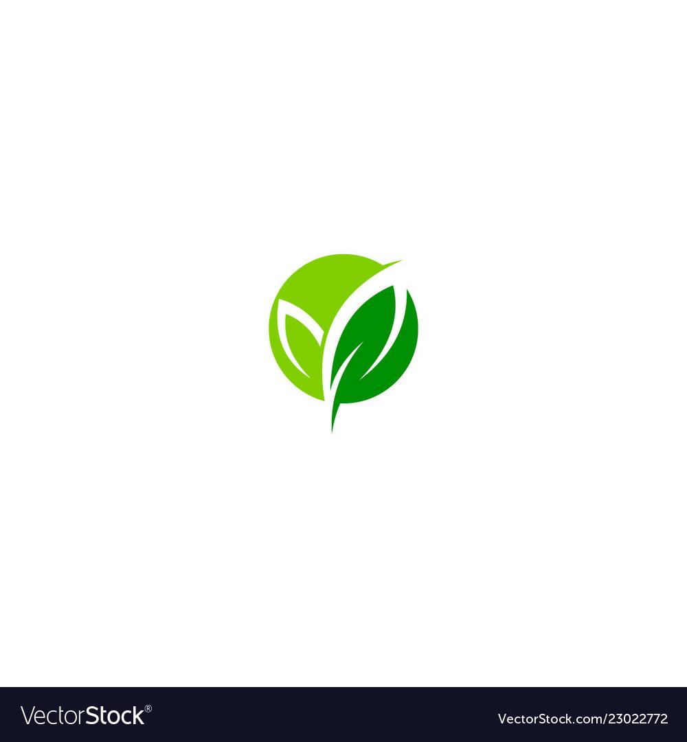 Green leaf organic eco logo