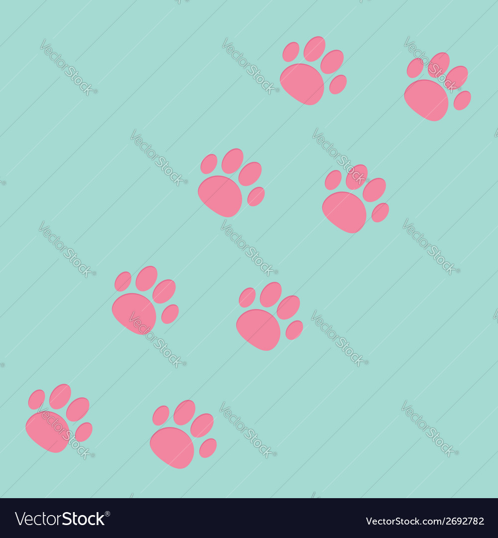 Paw print track diagonal Blue and pink