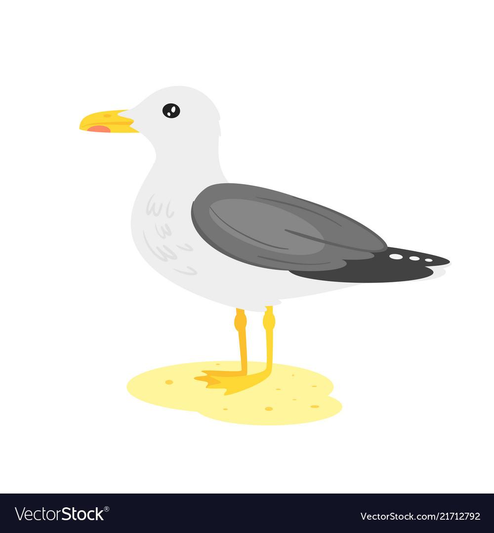 Cartoon style seagull