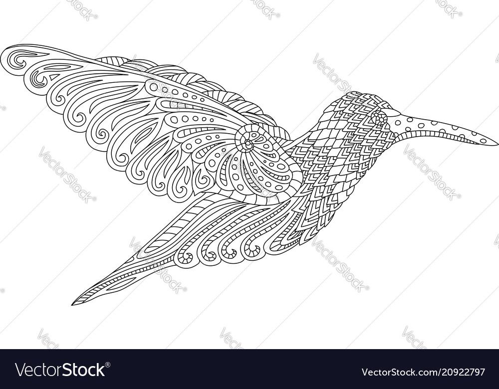Beautiful decorative hummingbird vector image