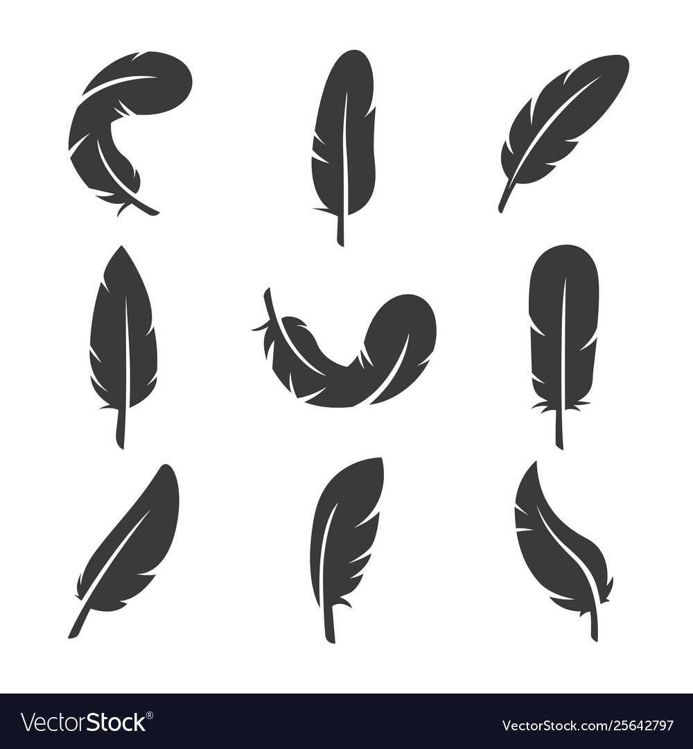 Feathers icon set image