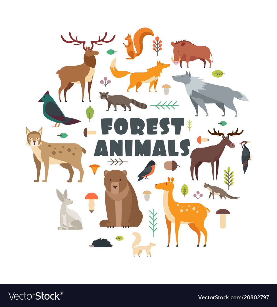 Wild forest animals and birds arranged in circle