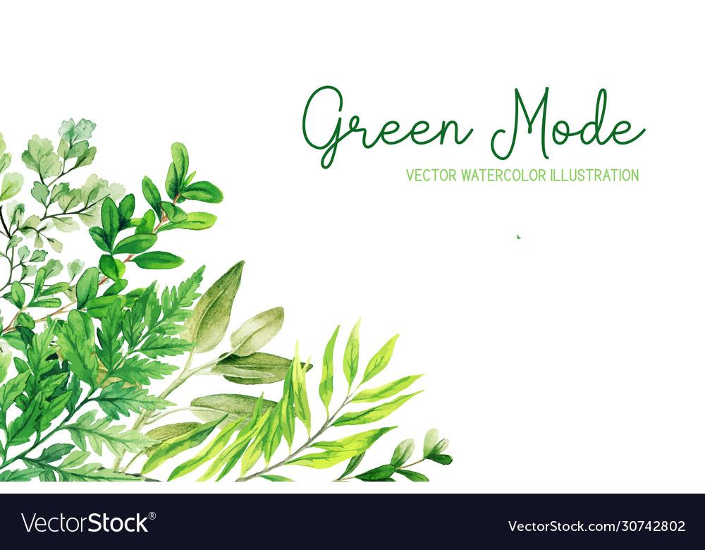 Wild herbs leaves and ferns green corner frame