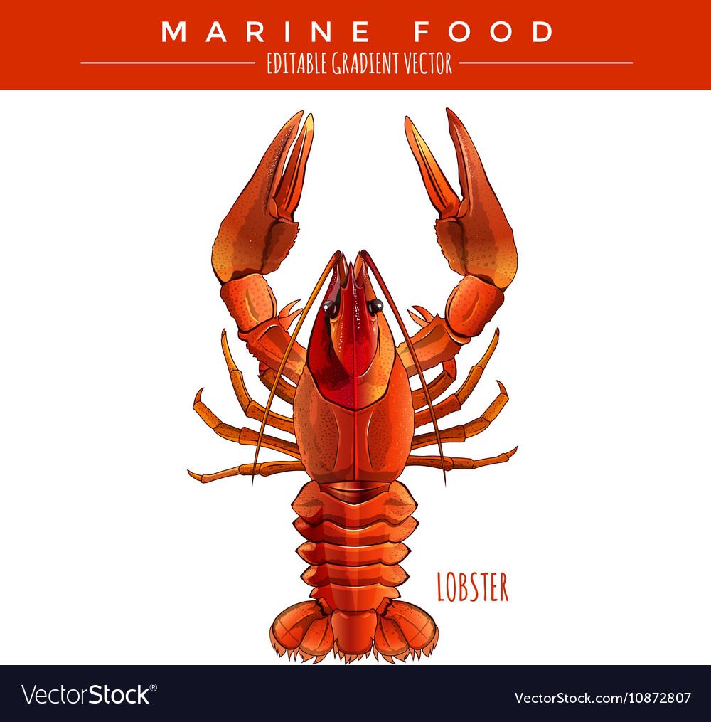Red Lobster Marine Food