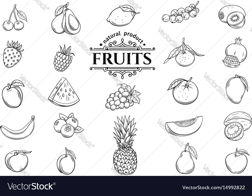 Hand drawn fruits icons set