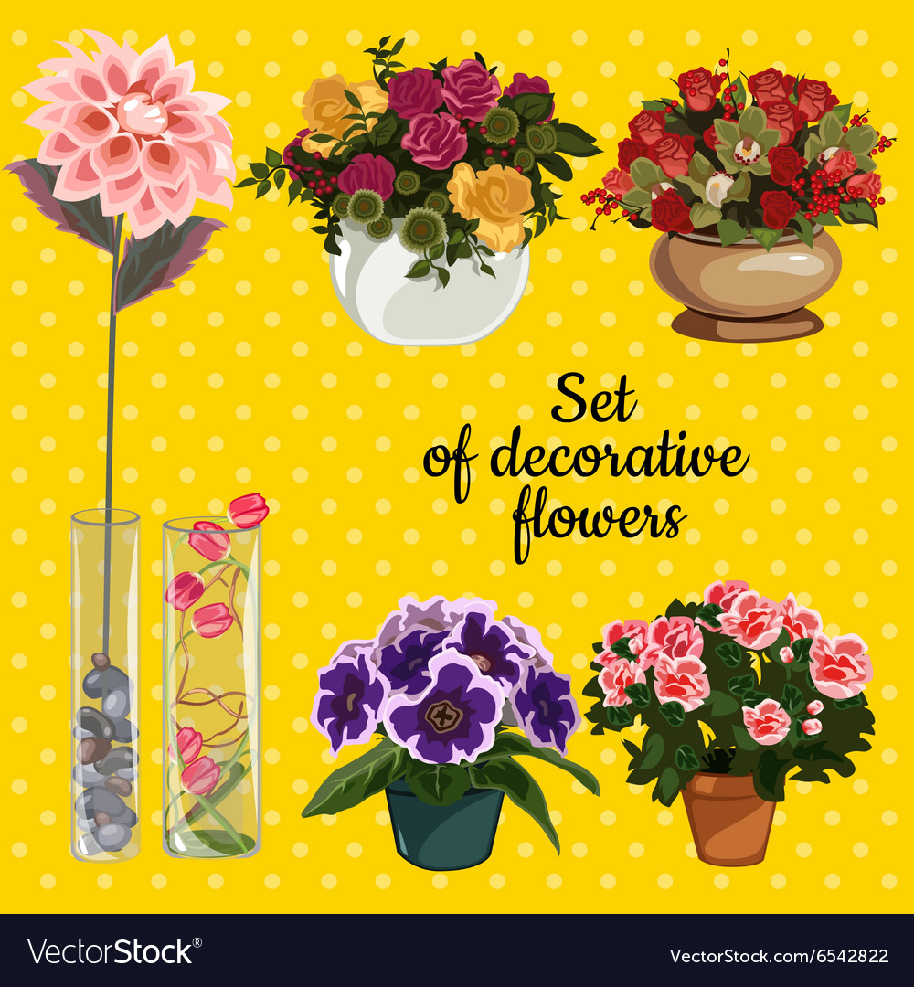 Set of potted flowers on a yellow background vector image mightylinksfo